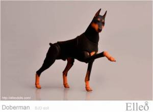 Doberman_bjd_doll_95