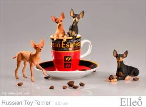 Russian_Toy_Terrier_90