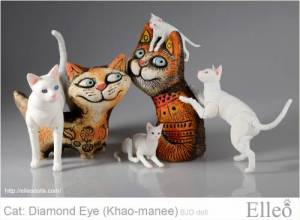 khao-manee_cat_bjd_89