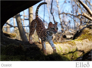 ocelot_wild_doll_cat_06