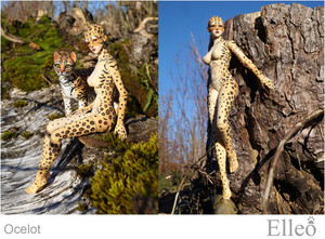 ocelot_wild_doll_cat_08